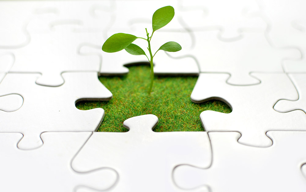 A plant grows around a puzzle